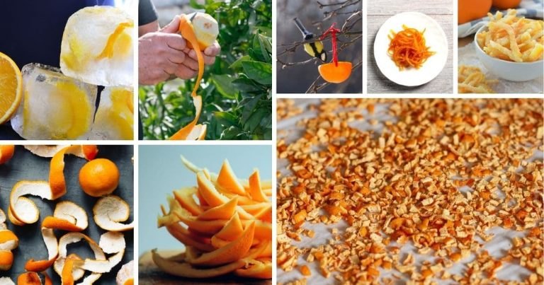 39 Exciting Things To Do With Orange Peels